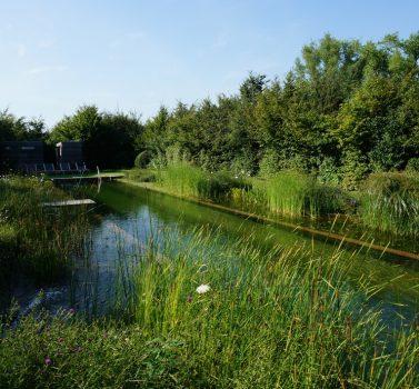 Biotop Eco Zwemvijver Genk
