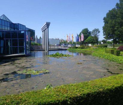 Tuinrenovatie Tuin renoveren